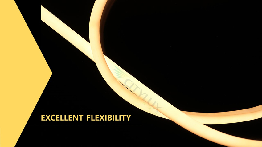 Excellent Neon Flexible Strip