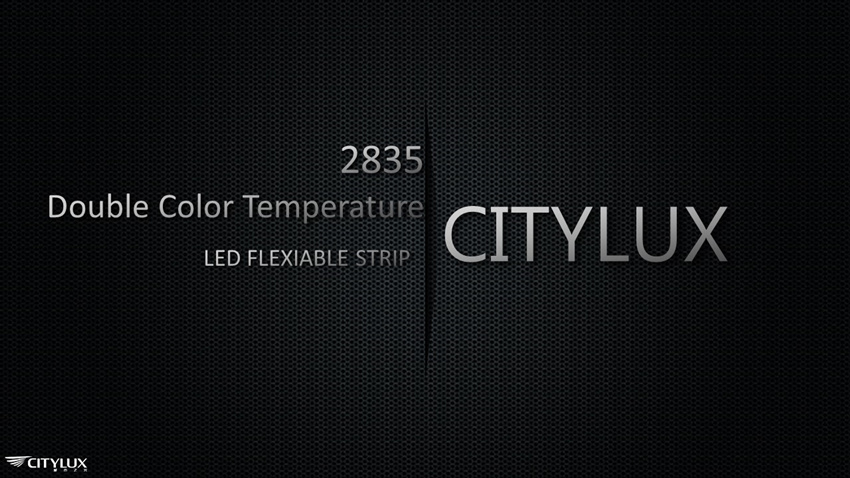 High performance-price ratio 2835 LED Flex Strip
