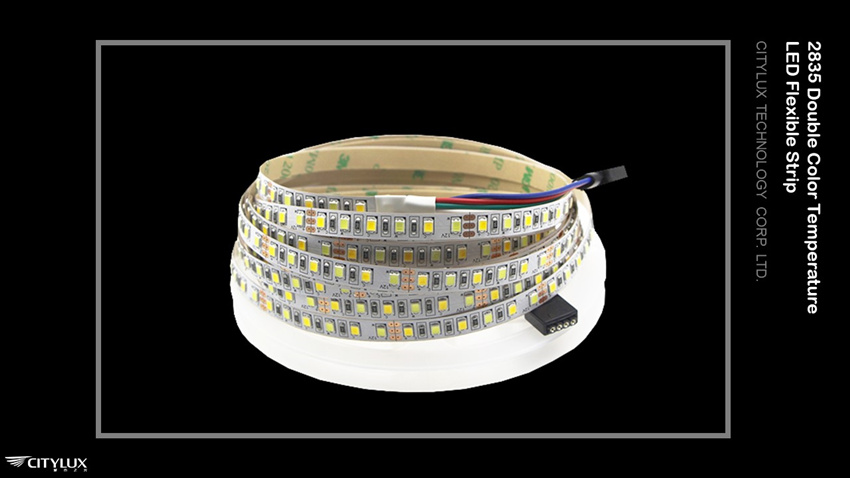 2835 Double Color Temperature LED Flex Strip